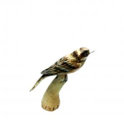 Ahşap serçe-El yapımı kuş